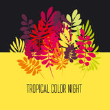 Concept tropical leaves vector illustration Royalty Free Stock Image