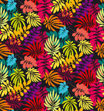 Concept tropical leaves vector illustration Royalty Free Stock Photography