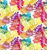 Concept tropical leaves vector illustration Royalty Free Stock Photos