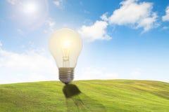 Concept van de Eco het vriendschappelijke verlichte gloeilamp voor idee, innovatie Royalty-vrije Stock Fotografie