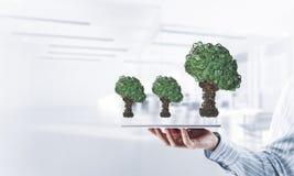 Concept van het Eco het groene die milieu door boom als het werk mecha wordt voorgesteld Stock Fotografie