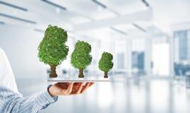 Concept van het Eco het groene milieu dat door boom als werkende mechanisme of motor wordt voorgesteld Stock Foto's