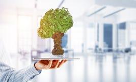 Concept van het Eco het groene milieu dat door boom als werkende mechanisme of motor wordt voorgesteld Stock Afbeelding
