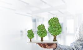 Concept van het Eco het groene milieu dat door boom als werkende mechanisme of motor wordt voorgesteld Stock Fotografie