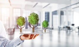 Concept van het Eco het groene milieu dat door boom als werkende mechanisme of motor wordt voorgesteld Stock Foto