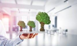 Concept van het Eco het groene milieu dat door boom als werkende mechanisme of motor wordt voorgesteld Royalty-vrije Stock Afbeeldingen