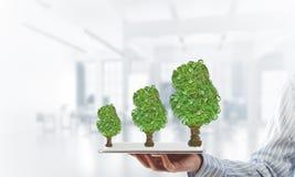 Concept van het Eco het groene milieu dat door boom als werkende mechanisme of motor wordt voorgesteld Royalty-vrije Stock Afbeelding