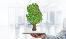 Concept van het Eco het groene milieu dat door boom als werkende mechanisme of motor wordt voorgesteld Stock Afbeeldingen