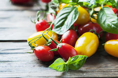 Concept of vegan food with tomato and basil Royalty Free Stock Photography