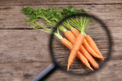 Concept of vegetable quality analysis Royalty Free Stock Images