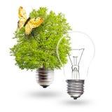 Concept vert d'énergie Photo stock