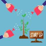 Concept vert de croissance d'affaires Beaucoup de mains humaines avec de l'eau boîtes commencent l'arbre Images libres de droits