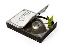 Concept vert de disque dur Image stock