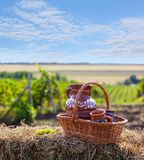 Jug in basket of straw on background of the vineyards valley. Concept of vine. Traditional Moldova story. Jug in basket of straw on background of the vineyards Royalty Free Stock Photos