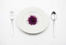 Concept of Violet flower on plate Stock Photo