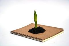 Concept voor sparen milieu Stock Afbeelding