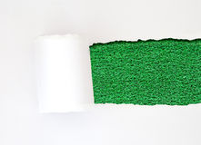 Concept white paper green grass Royalty Free Stock Image