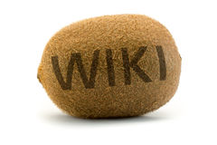 Concept wiki on kiwi. Encyclopedia wikipedia. Concept wiki on kiwi. Encyclopedia wikipedia in a unusual way displayed royalty free stock image