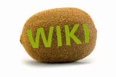 Concept wiki on kiwi. Encyclopedia wikipedia. Royalty Free Stock Photography