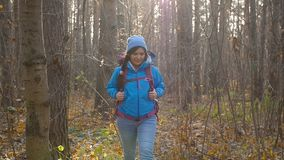 Concept of winter, autumn travel and hiking. Young hiker woman hiking outside in a autumn forest. Concept of travel and hiking. Young hiker woman hiking outside stock video footage