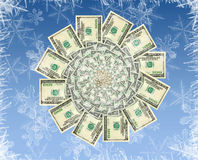 Concept of a winter money flower Stock Image