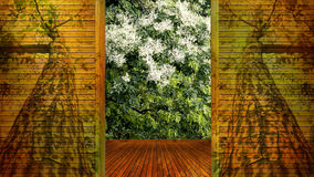 Concept of wood  open door see the tree Royalty Free Stock Image
