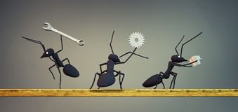 Concept work, team of ants Royalty Free Stock Photography