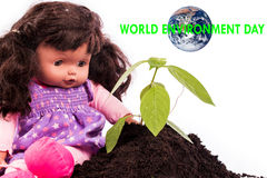 Concept World Environment day Stock Images