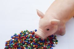 The Year of the Pig, The year of being successful Can grab stars. royalty free stock image