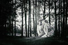 Concepten prachtig sprookje met mooi meisje Stock Fotografie