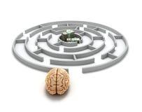 Conceptenonderzoek van geldhersenen bij de ingang aan het labyrint en m stock illustratie
