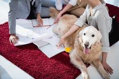 Concepteurs travaillant avec des modèles tout en se reposant sur le plancher avec le chien Image stock