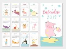 Conception animale mignonne du calendrier 2019, l'année des calibres mensuels de cartes de porc, ensemble de 12 mois, enfants men Photos libres de droits
