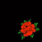 Conception avec la fleur rouge lumineuse Images libres de droits