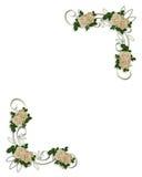 Conception blanche de coin de roses Photos stock