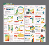Conception colorée d'insecte de brochure de calibre de présentation d'Infographic Photographie stock libre de droits