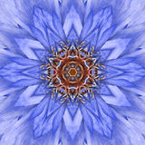 Conception concentrique bleue de Mandala Kaleidoscopic de centre de fleur Photos libres de droits