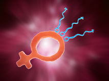 Conception concept. Sex symbols forming the egg and the sperm cells - conception illustration Stock Image