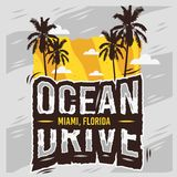Conception d'été de Miami Beach la Floride d'entraînement d'océan avec l'illustration de palmiers Images stock