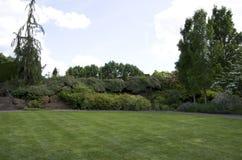 Conception d'arrière-cour de jardin de pelouse Photos stock