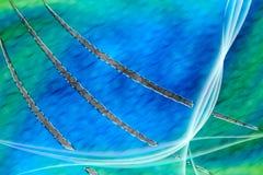 Conception d'Aurora Background/papier peint avec la griffe Scratc Image libre de droits