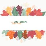 Conception d'automne avec les feuilles lumineuses colorées Image stock