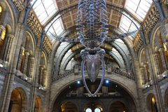 Conception d'héritage, musée à Londres, R-U image stock
