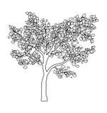 Conception d'icône de symbole de vecteur d'isolement par silhouette d'arbre Photographie stock libre de droits