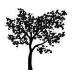 Conception d'icône de symbole de vecteur d'isolement par silhouette d'arbre Images stock