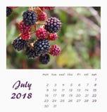 Conception 2018 d'insecte de calibre de calendrier de bureau de juillet valence Image stock
