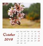 Conception 2018 d'insecte de calibre de calendrier de bureau de juillet valence Image libre de droits