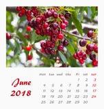 Conception 2018 d'insecte de calibre de calendrier de bureau de juillet valence Photos libres de droits