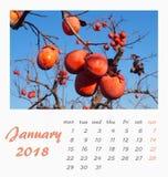 Conception 2018 d'insecte de calibre de calendrier de bureau de juillet valence Photos stock