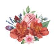 Conception d'invitation d'aquarelle avec le bouquet de compositions florales peintes à la main de fleurs d'isolement sur le fond  Image libre de droits